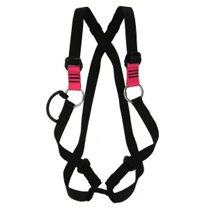 Child's Full Harness